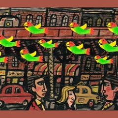 "Wild Parrots of Brooklyn • <a style=""font-size:0.8em;"" href=""http://www.flickr.com/photos/46362485@N02/24897594415/"" target=""_blank"">View on Flickr</a>"
