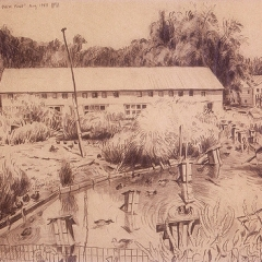 """Duck Pond • <a style=""""font-size:0.8em;"""" href=""""http://www.flickr.com/photos/46362485@N02/13699016434/"""" target=""""_blank"""">View on Flickr</a>"""