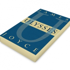 "ULYSSES-BOOK • <a style=""font-size:0.8em;"" href=""http://www.flickr.com/photos/46362485@N02/46997977954/"" target=""_blank"">View on Flickr</a>"