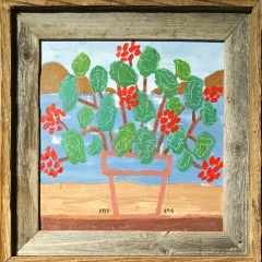"""Geraniums • <a style=""""font-size:0.8em;"""" href=""""http://www.flickr.com/photos/46362485@N02/28578974018/"""" target=""""_blank"""">View on Flickr</a>"""